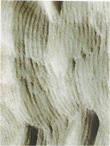 scultura; gradina